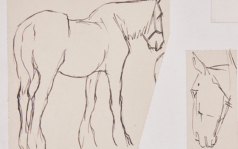drawings by alum Sir Alfred Munnings depicts two sketches - on the left a black outline of a standing horse with simple lines and faint outlines and on the right a loose sketch of a horses head