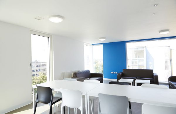 Communal kitchen - photo of wide white room with blue feature wall and wide floor length windows with white table and chairs in foreground and brown leather sofas in background