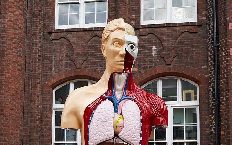 Hymn by Damien Hirst at Norwich University of the Arts