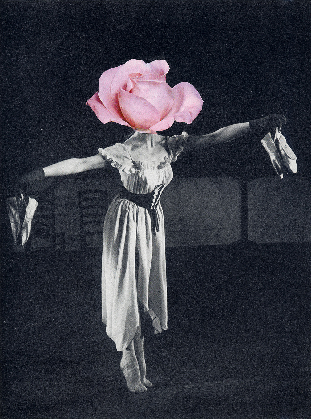 Collage of a woman with a rose for a head.