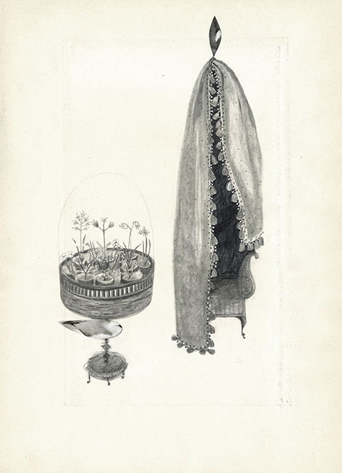 Illustration - Pencil drawing of an ornate coffee table with a domed top and flowers underneath the glass, next to a hanging piece of fabric