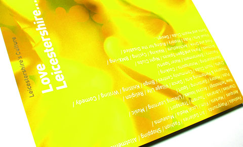Love Leicestershire- Cultural Strategy 2002-2008 -