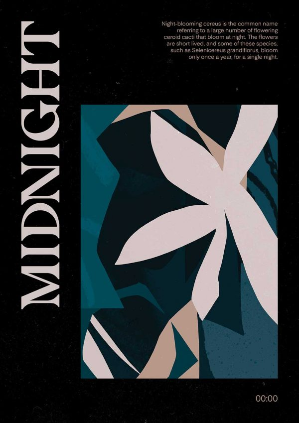 - Illustration showing the word Midnight with a flower by BA Illustration graduate from Norwich University of the Arts Tom Abbiss Smith
