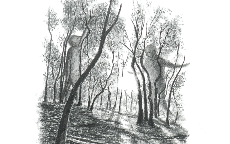 Charcoal drawing of a forest with large human shadows walking through it