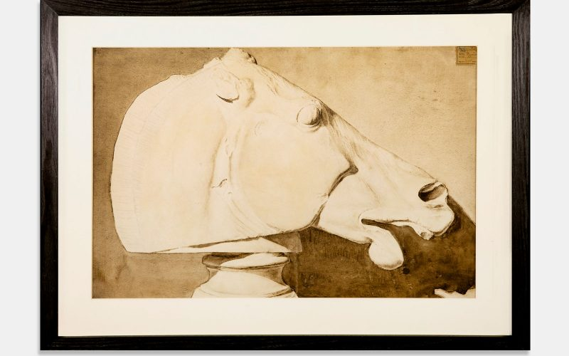 Horses head by Munnings restored by Norwich University of the Arts