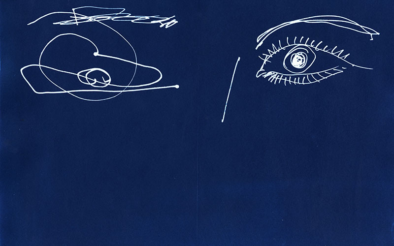 Amy Fellows cyanotype