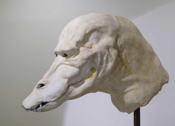 Tom Browning, MA Fine Art - Large white anatomical model of a creature's head on a metal pole