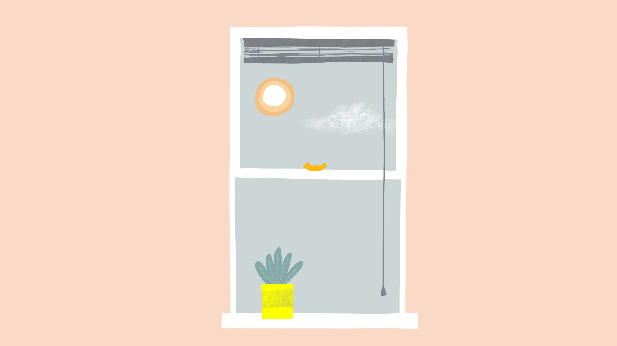 Illustration by MA Communication Design student Charlotte Johnston of a window with a plant