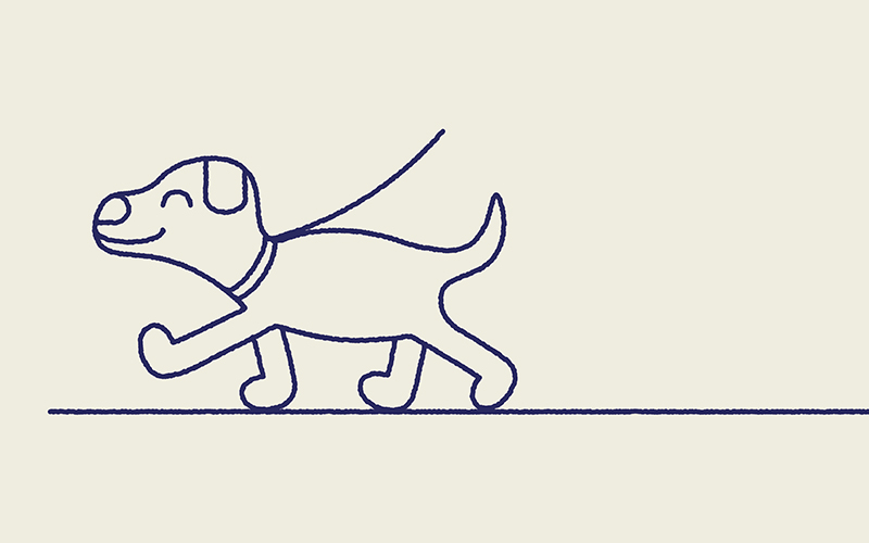 Line drawing of a dog walking on a lead smiling