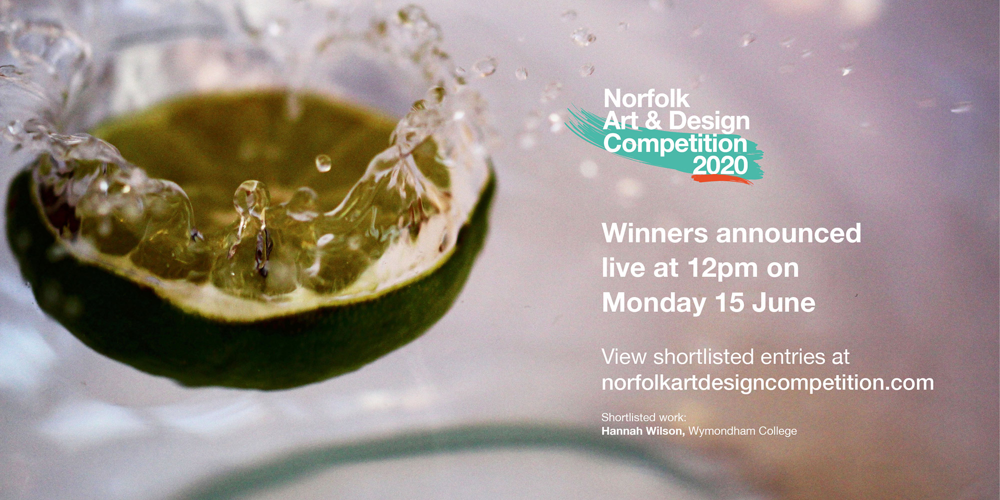 Norfolk Art and Design Competition 2020