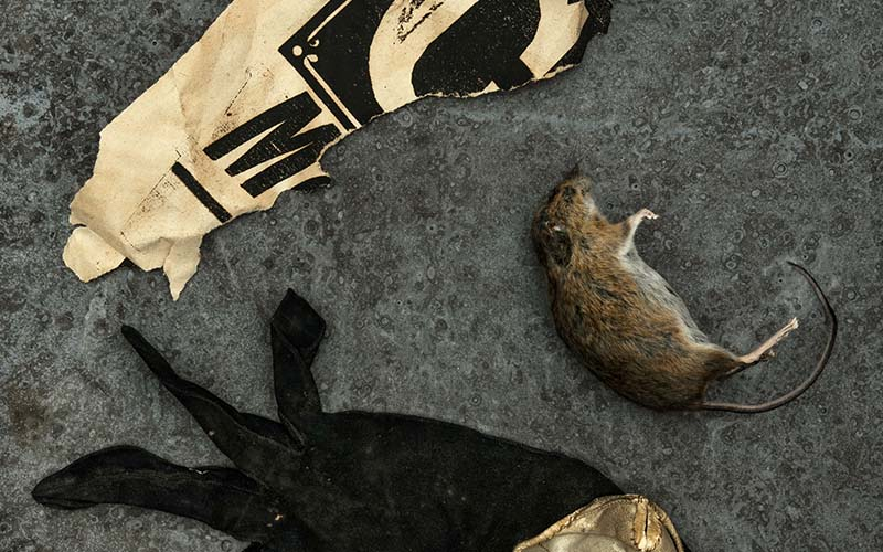 A photo taken from above of a floor, on which lies a mouse, a glove and a piece of paper