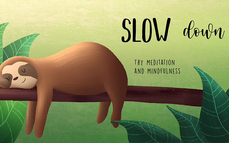 Illustration by student Sophie Kent showing a sloth laying on a branch against a green background