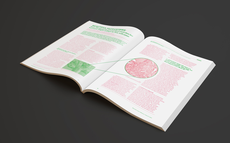 Mockup of a magazine, made up from pink and green images and text. By BA Design for Publishing student Amber Conte