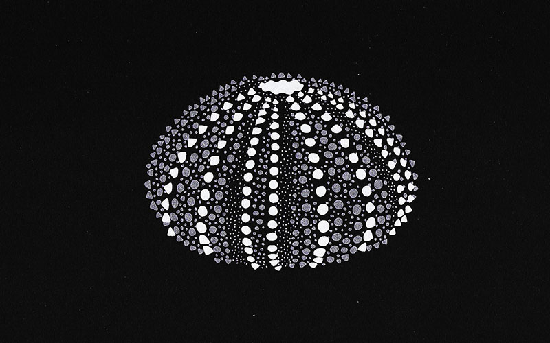 A white drawing made of dots on a black background of a spherical shell