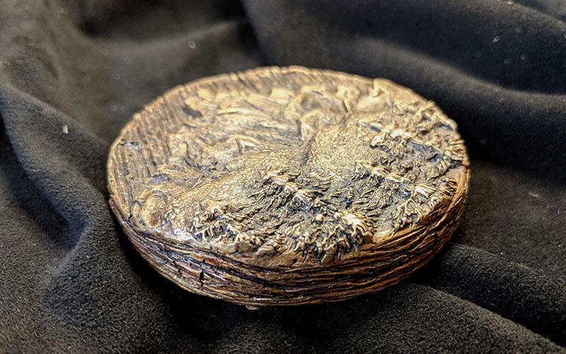 Round bronze disk laid flat on dark fabric