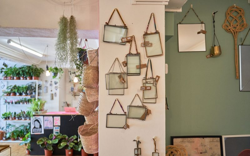 Mirrors on a column in Elm Plant Shop in Norwich next to a green wall and plants hanging from the ceiling